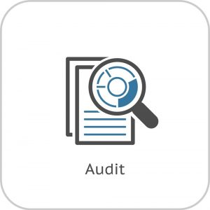 audit-icon-business-concept-flat-design-vector-6031483